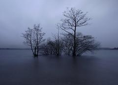 Not Waving but Drowning (kenny barker) Tags: scotland trossachs lochlomond millarochybay