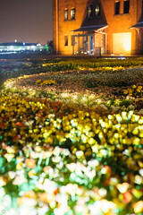 DS7_2686.jpg (d3_plus) Tags: street bridge plant flower building nature japan walking nikon scenery nightshot bokeh outdoor daily architectural flowerbed bloom 日本 streetphoto nightview yokohama nikkor 花 自然 夜景 散歩 dailyphoto 風景 植物 マクロ 50mmf14 thesedays sakuragicho redbrickwarehouse 川崎 flowergarden 建築物 景色 神奈川県 日常 50mmf14d 路上 nikkor50mmf14 桜木町 赤レンガ倉庫 花壇 赤レンガ ボケ ストリート ニコン 花畑 afnikkor50mmf14 yokohamaredbrickwarehouse 50mmf14s architecturalstructure d700 kanagawapref 屋外 nikond700 aiafnikkor50mmf14 路上写真 nikonfxshowcase nikonaiafnikkor50mmf14
