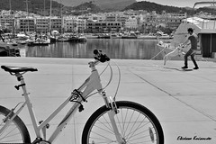 (Eleanna Kounoupa) Tags: street sea blackandwhite bw dog water bicycle port boats greece crete rethymnon     blackwhitephotos