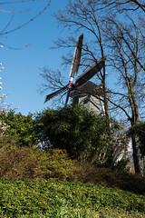 Windmhle im Keukenhof (swissgoldeneagle) Tags: holland netherlands windmill d750 niederlande keukenhof zuidholland windmhle lisse windmuehle