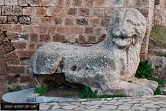 Il Leone di San Marco (Famagosta) (frillicca) Tags: 2015 cyprus famagusta febbraio leonedisanmarco turchia sculpture venetianlion sanmarcolion cypro cyprusturkey famagosta febbrary lion stone scultura venicelion cipro