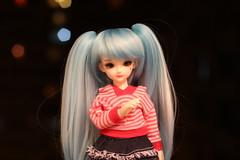IMG_8207 (Emma Wolf) Tags: doll bjd customblythe obitsucustom classydoll dimdolllarina mystickids zinnadollmore