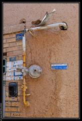 Yadz (Iran) : Vielle ville (L'Abominable Homme de Rires) Tags: travel trek iran yadz allibert