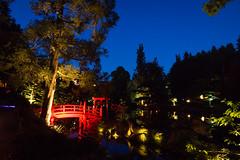 DSC05456 (regis.verger) Tags: temple zen nuit parc nocturne asiatique vgtal maulvrier
