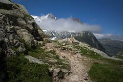 trail to Camona da Terri CAS (Toni_V) Tags: summer mountains alps schweiz switzerland europe suisse hiking sommer 28mm rangefinder trail mp alpen svizzera sentiero wanderung wanderweg randonne 2016 graubnden grisons svizra escursione terrihtte leicam surselva grischun elmaritm messsucher 160716 greinaebene valsumvitg greinahochebene typ240 toniv m2400711 plaundagreina drinpassdiesrutterrihtterabius