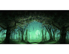 F13 (scenicprojects) Tags: f13 misty forest 40 x 20 122m 61m