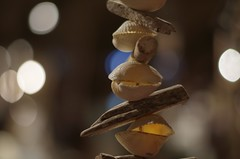 Shells and wood (horschte68) Tags: shells shell wood bokeh dof depthoffield usedom koserow pentaxda50f18 f18 wideopen availablelight germany deutschland pentax k50 indoor decoration scenery maritimeatmosphere maritimespirit urlaub holiday vacation ferien 20160714 165514