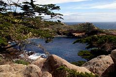 080-point lobos- (danvartanian) Tags: pointlobos california landscape nature