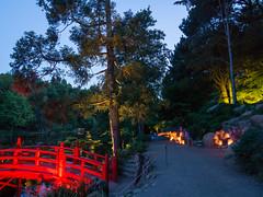 DSC05444 (regis.verger) Tags: temple zen nuit parc nocturne asiatique vgtal maulvrier