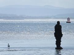 DSCF0747 (SierPinskiA) Tags: sea shells beach liverpool sand ironman pools barnacles ironwork mayday seashore merseyside anthonygormley irishsea 2016 anotherplace crosbybeach blundellsands fujixs1