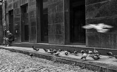 Olympus 35 SP (Paulo J Moreira) Tags: blackandwhite bw film portugal blackwhite streetphotography rangefinder pb porto filmcamera pretoebranco classiccamera olympus35sp fotografiaderua filmcompact compactfilmcamera paulomoreira classicfilmcamera