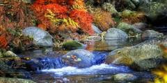 (198/16) Arroyos en otoño (Pablo Arias) Tags: pabloarias españa spain hdr photomatix nx2 photoshop texturas paisaje arroyo agua cascada serenidad elvalledeltietar avila comunidadcastillaleón