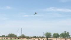IMG_0558 (Mesa Arizona Basin 115/116) Tags: basin 115 116 basin115 basin116 mesa az arizona rc plane model flying fly guys flyguys