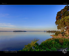 Golden Hour Blues (tomraven) Tags: blues goldenhour water harbour serene serenity tauranga tree blue green aravenimage tomraven q32016 nikon1 j5