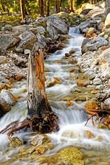 Evenflow (ZeePack) Tags: landscape sunset stones rocks waterfall longexposure stream hills flow silky dusk stump goldenhour canon india himachalpradesh 5dmarkiii lahaulspiti outdoor serene water