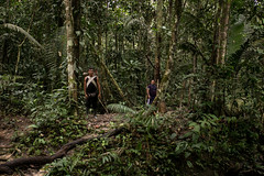 Guilherme.Gnipper-0146 (guilherme gnipper) Tags: picodaneblina yaripo yanomami expedio expedition cume montanha mountain wild rainforest amazonas amazonia amazon brazil indigenous indigena people