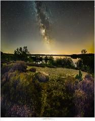 Perseds and a landscape under the Milky Way (nandOOnline) Tags: star sterren meteorites maasduinen meteorieten melkweg sterrenhemel dark panorama light pollution milky way meteoren heide meteors lichtvervuiling galaxy donker nacht meer heather zandverstuiving perseiden
