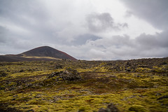 Berserkjahraun 44 (raelala) Tags: 2016 berserkjahraun snaefellsnes snaefellsnespeninsula canon1785mm crater europe europeantravel iceland icelanding2016 lava lavafield photographybyrachelgreene ringroad roadtrip scandinavia thatlalagirl thatlalagirlphotography thatlalagirlcom travel