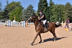 DSC_0894 (2) (ploufjf_64) Tags: paus show jumping chevaux pau 2016