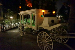 """The Horse Drawn Hearse • <a style=""""font-size:0.8em;"""" href=""""http://www.flickr.com/photos/28558260@N04/28957942615/"""" target=""""_blank"""">View on Flickr</a>"""