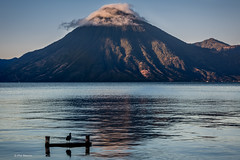 A lone bird admires the sunrise over Lake Atitlan (Phil Marion (50 million views - thanks)) Tags: philmarion 5photosaday beauty beautiful travel vacation candid beach woman girl boy wedding people explore  schlampe      desnudo  nackt nu teen     nudo   kha thn   malibog    hijab nijab burqa telanjang  canon  tranny  explored nude naked sexy  saloupe  chubby young nubile slim plump sex nipples ass hot xxx boobs dick dink