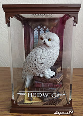 Hedwig (Lagoona89) Tags: harry potter magical creatures noble collection hedwig snowy owl figurine hungarian horntail ungarischer hornschwanz magische tierwesen star ace