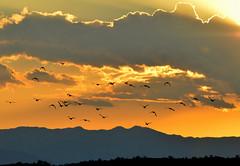 Flying Into The Sunset (Eleu Tabares) Tags: sunset sunrise sky clouds lasvegas nevada desert