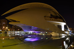 El casco / Helmet (Txemari Roncero) Tags: valencia ciudaddelasartesylasciencias arquitectura arquitecture nocturna largaexposición longexposure nikon nikond7000 tokina1224 oscuridad txemarironcero palaciodelasartesreinasofia