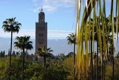 Palm Trees, Koutoubia Mosque and Atlas Mountains