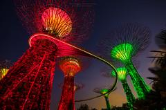 Singapura (Charl||e.) Tags: city urban landscape nikon singapore sg 2014 d7000