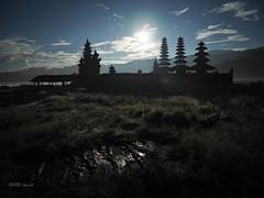 P4160880.jpg (kwaek) Tags: camera bali indonesia lens wideangle subject 12mm dslr denpasar mkii markii balinese f20 m43 em5 mirrorless micro43 microfourthird mzuiko em5markii