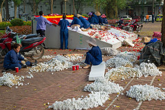 Preparing for the Party - Hanoi, Vietnam. (Hector16) Tags: 2015 april30th asia asian communism communist flowers gardening hanoi propaganda reunification reunificationcelebrations socialistrepublicofvietnam vietnam vietnamese hànội vn gettyimages getty images
