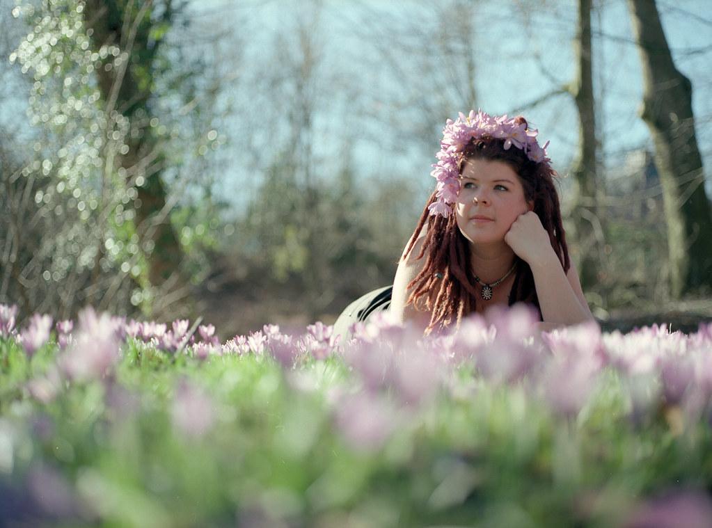 *FILM* sea of flowers