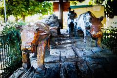 Ox Wood (Cmuozfernandez) Tags: wood madera escultura tallado art arte bull calf becerro buey bueyes cow toro sculpture