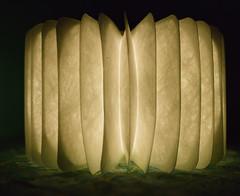 stone (C.Kunta) Tags: 6x7 120  iso80 kodakppn160 pentax67ii slr lamp illusion