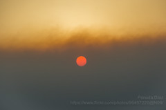 Sun behind clouds of smoke-wildfire in La Palma island (explored) (persidadiaz) Tags: august sunset wildfire smoke sun lapalma canaryislands canarias incendio ifjedey fire incendioforestal puestadesol fuencaliente summer verano