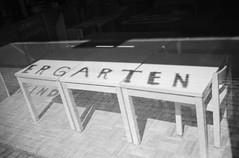 ...garten (Mind & Brain) Tags: blackwhite analog film