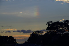 SundogBalranald_bL (hokonui) Tags: sundog parhelion atmosphere australia nsw sky