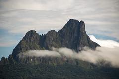 Guilherme.Gnipper-0080 (guilherme gnipper) Tags: picodaneblina yaripo yanomami expedio expedition cume montanha mountain wild rainforest amazonas amazonia amazon brazil indigenous indigena people