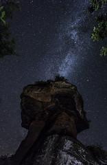 Milky Way over Devil's Table (Sijie Shen) Tags: europe germany rheinlandpfalz hinterweidenthal teufelstisch devils table landscape nightscape astrophotography trees rocks stars milkyway galaxy clear sky