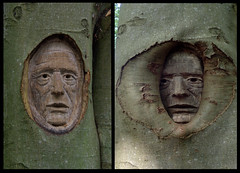 2011-2016 (Floortje Walraven) Tags: gerdsennema openstal oldeberkoop kunst kunstroute 2011 2016 2010 boom tree beeldhouwkunst houtsnijwerk sculpture carving art portret