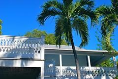 Key West (Florida) Trip 2015 0504Rif 4x6 (edgarandron - Busy!) Tags: florida keys floridakeys keywest blueparrotinn building buildings