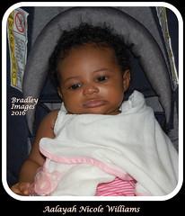 Eyes Wide Open (daddydell28) Tags: granddaughter bradleyimages baby nikond40 sacramentocalifornia eyes ebony newborn