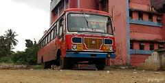 Borivali - rajapur (yogeshyp) Tags: msrtc borivalirajapurstbus rajapurdecoratedbus