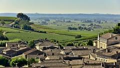 Saint Emilion , un'oasi di pace in mezzo ai vigneti ... (miriam ulivi) Tags: miriamulivi nikond7200 francia aquitania saintemilion tetti vigneti panorama roofs vineyards landscape