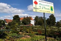 Baumschule (Wallus2010) Tags: pflanzen rosen canon eos500d baumschule himmel