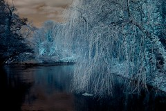 Stoop (tobyv_photo) Tags: blue toby sky tree green water canal nikond70 foliage infrared rivercolne denhamcountrypark