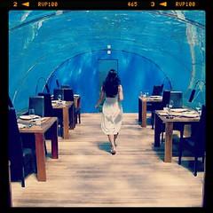 Under water restaurant (asuruma4422) Tags: square nashville squareformat iphoneography instagramapp uploaded:by=instagram