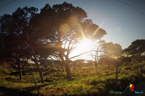 TravessiaBTT_Leiria-Sagres_4Dia_092