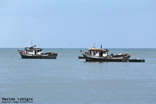 Fishing Boats - Panama